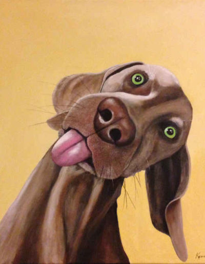 Dog Portrait: goofy, but adorable brown dog