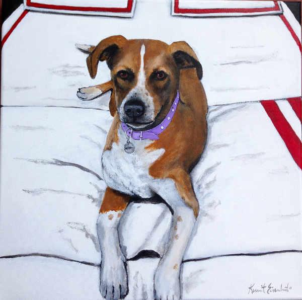 dog on white bedspread
